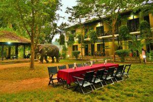 पर्यटन प्रवद्र्धनका लागि लुम्बिनीका होटलमा अफर