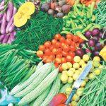 ज्यामरुककोटमा केरा र तरकारी खेती